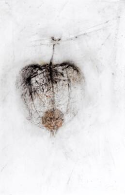 Didier Boussarie - Amour en cage