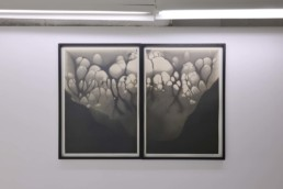 Nicolai Howalt - Silver Migration 16 - Galerie Maria Lund - vue expo migrations