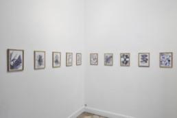 Esben Klemann - dessins - Galerie Maria Lund - vue expo migrations