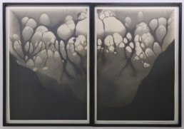 Nicolai Howalt - Silver Migration 16