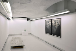 Nicolai Howalt Esben Klemann Pipaluk Lake - Galerie Maria Lund - vue expo migrations