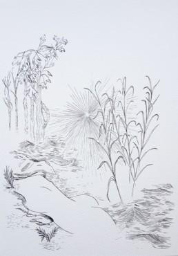 Elise Peroi - Métamorphose 1